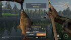 The Fisherman: Fishing Planet -arvostelu