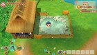 Story of Seasons: Friends of Mineral Town -arvostelu