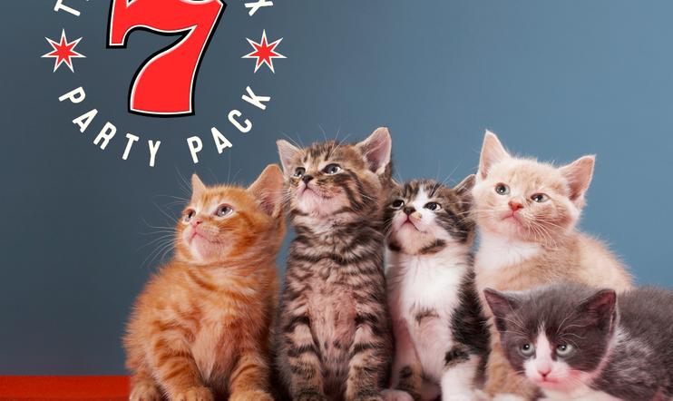 The Jackbox Party Pack, The Jackbox Party Pack 7, Jackbox Games, bilepeli